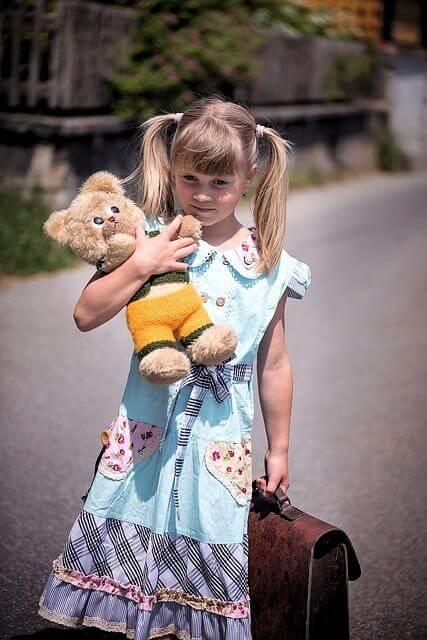 adoption custody overview