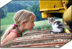 animal pet protection