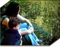 cohabitation marriage births