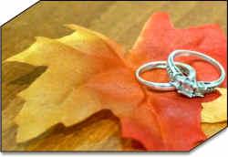 same-sex marriages ohio