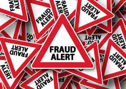 tax credit fraudulent